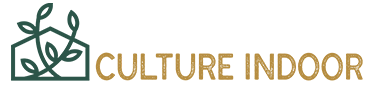 Guide d'achat de culture indoor